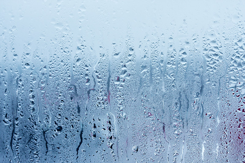 moisture problems in the home