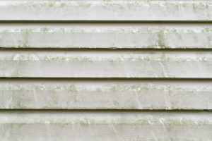 my siding turned green