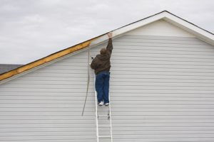 siding damage insurance
